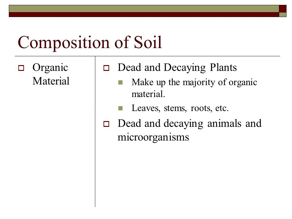 Composition of Soil Organic Material Dead and Decaying Plants