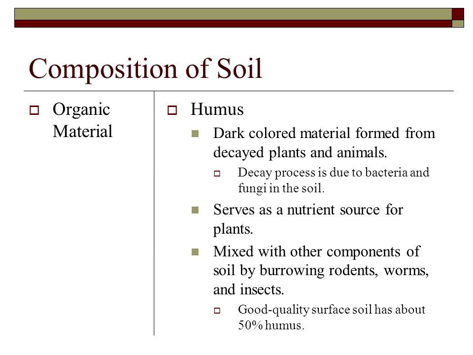 Composition of Soil Organic Material Humus