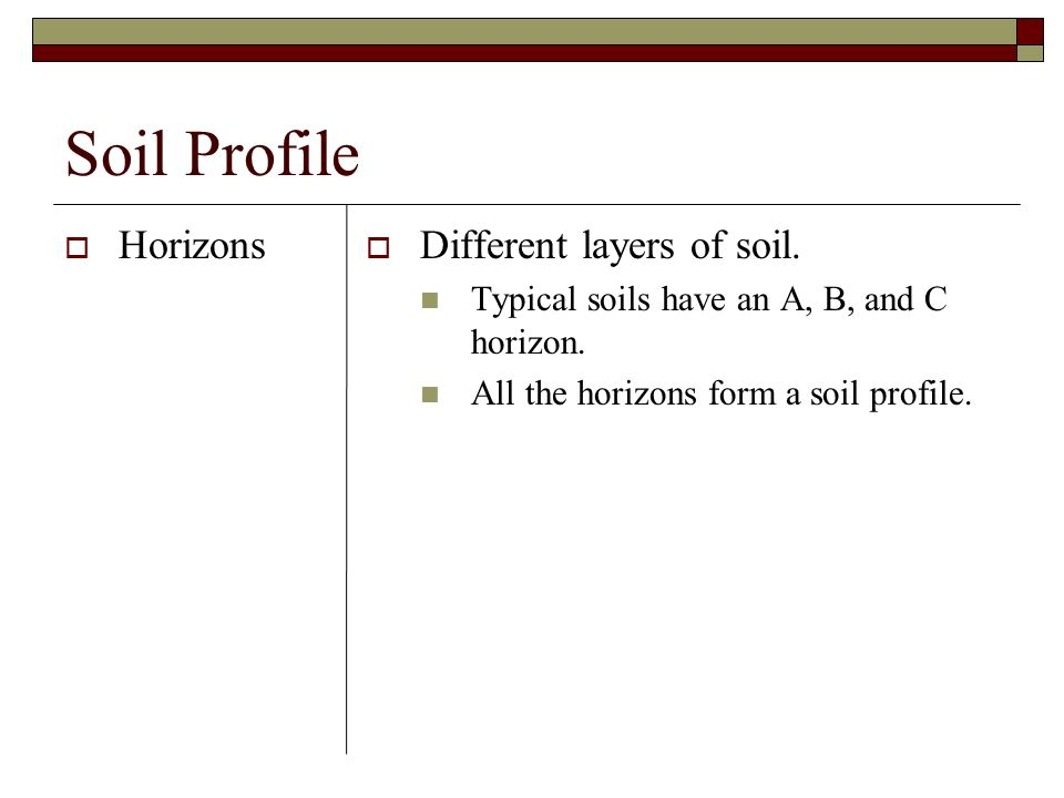 Soil Profile Horizons Different layers of soil.