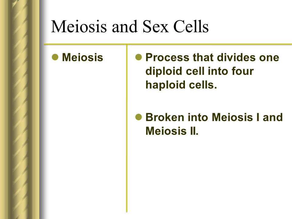 Meiosis and Sex Cells Meiosis