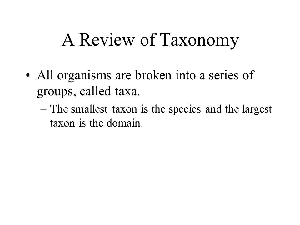 A Review of Taxonomy All organisms are broken into a series of groups, called taxa.