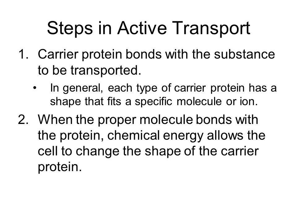 Steps in Active Transport