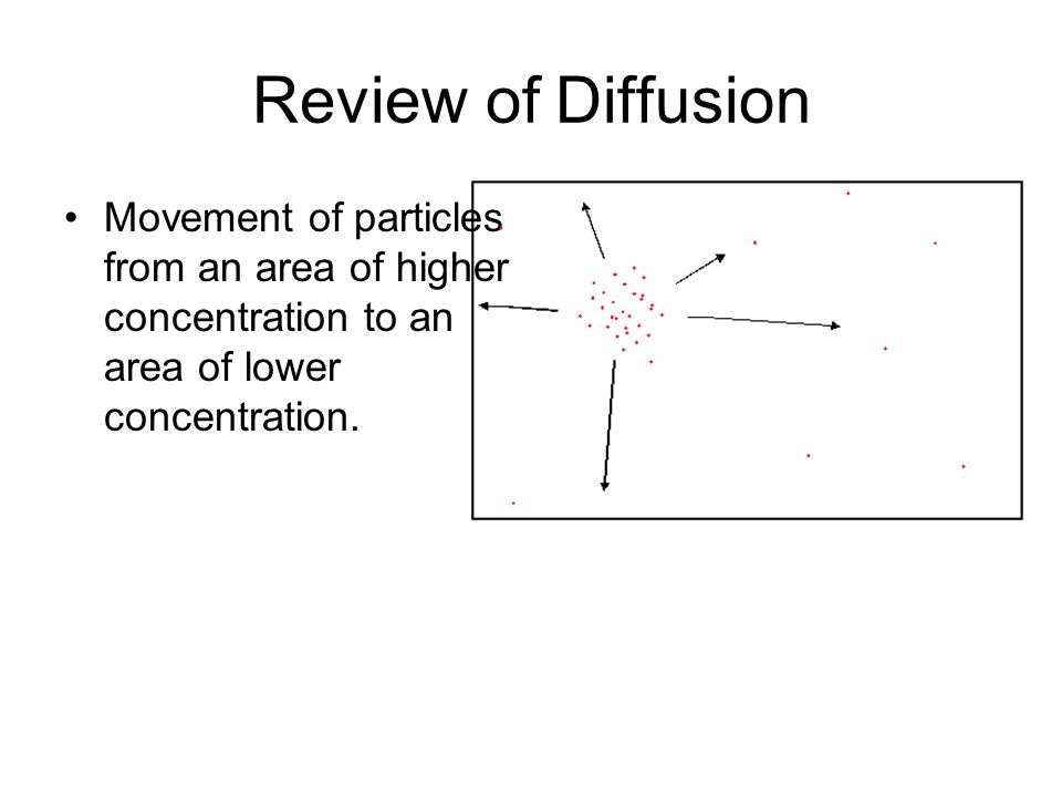 Review of Diffusion Movement of particles from an area of higher concentration to an area of lower concentration.
