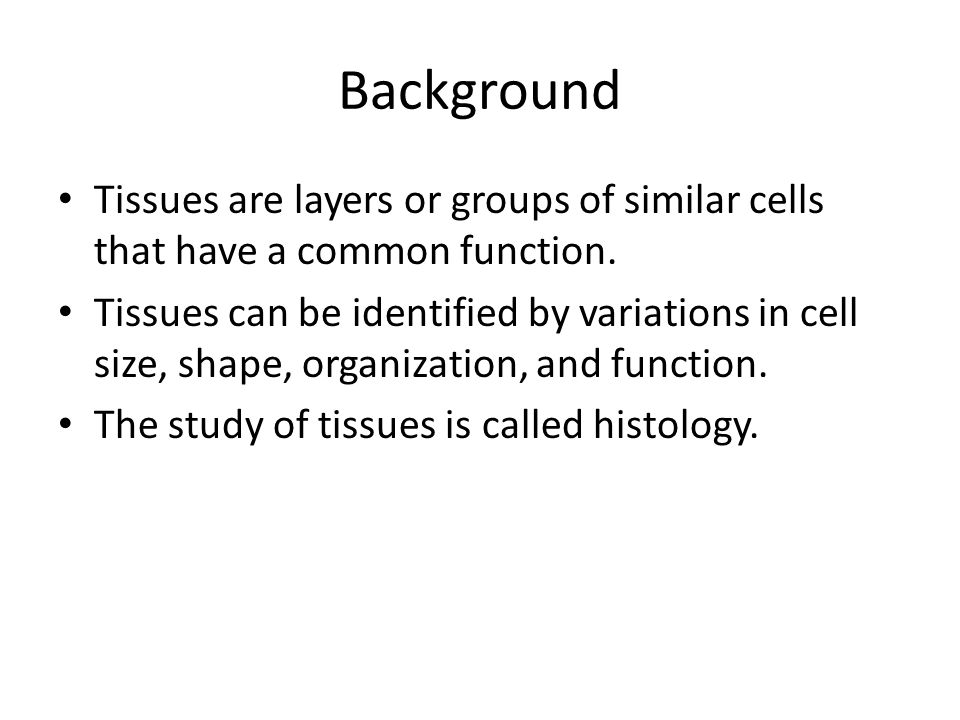 Background Tissues are layers or groups of similar cells that have a common function.