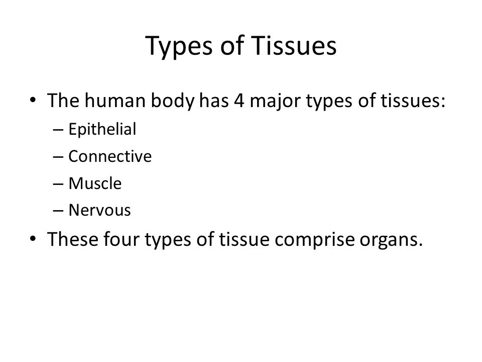 Types of Tissues The human body has 4 major types of tissues: