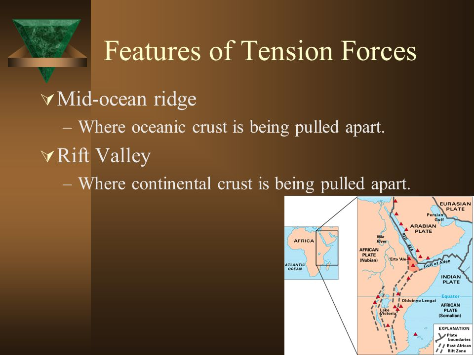 Features of Tension Forces