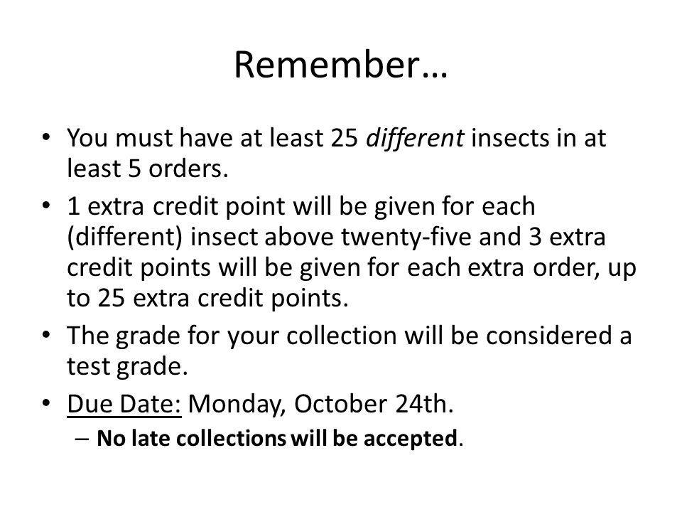 Remember… You must have at least 25 different insects in at least 5 orders.