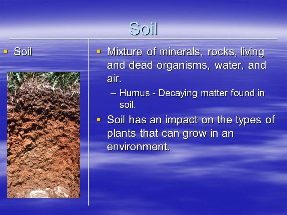 Soil Soil. Mixture of minerals, rocks, living and dead organisms, water, and air. Humus - Decaying matter found in soil.