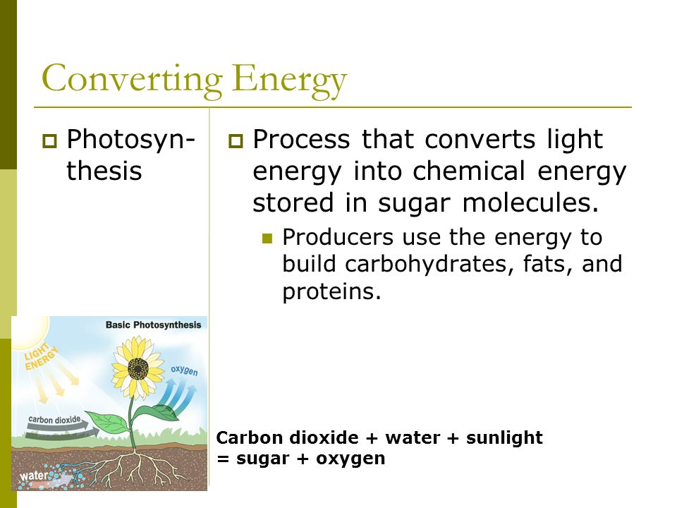 Converting Energy Photosyn-thesis