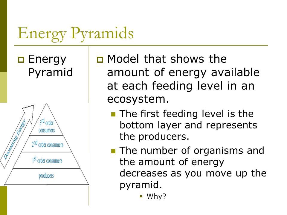 Energy Pyramids Energy Pyramid