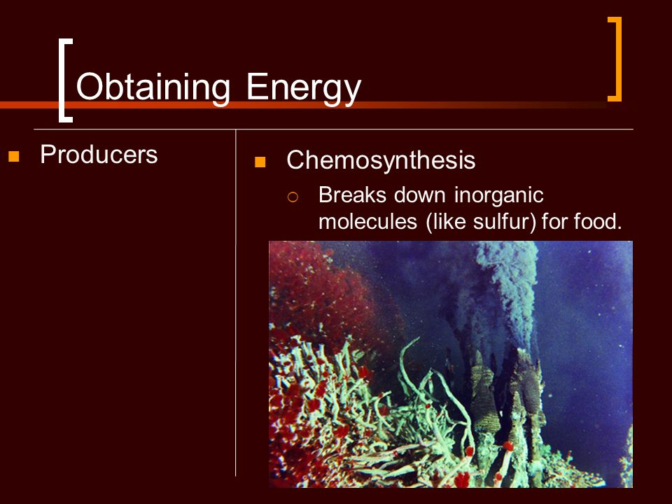 Obtaining Energy Producers Chemosynthesis