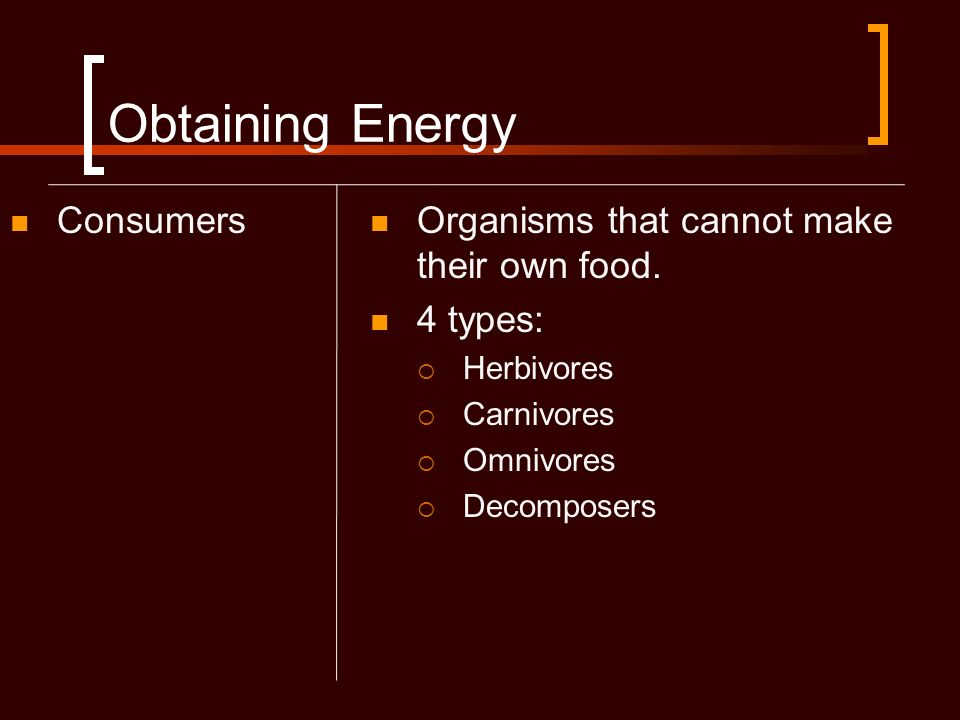 Obtaining Energy Consumers Organisms that cannot make their own food.