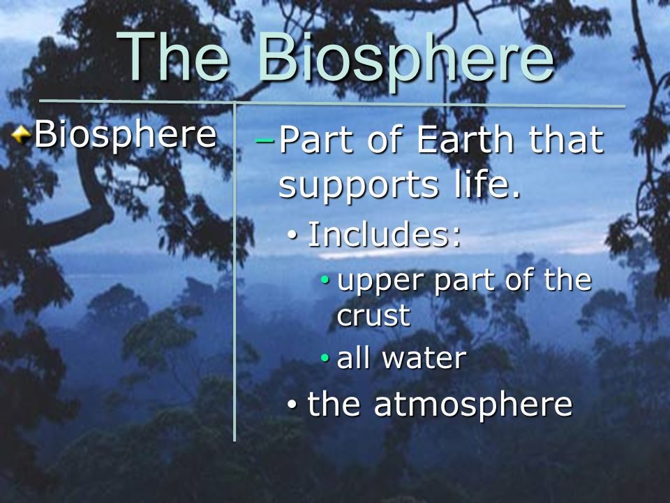 The Biosphere Biosphere Part of Earth that supports life. Includes: