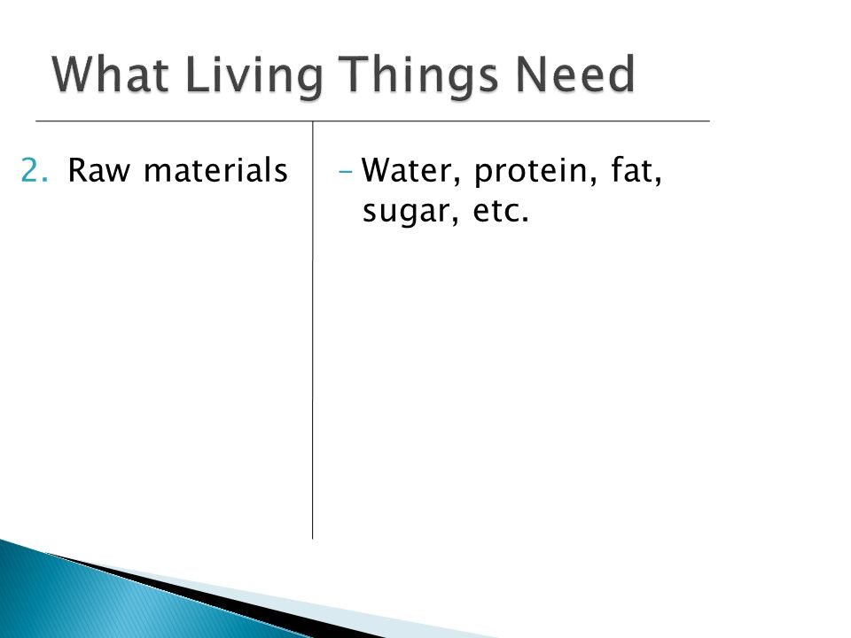 What Living Things Need