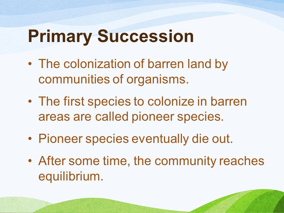 Primary Succession The colonization of barren land by communities of organisms.