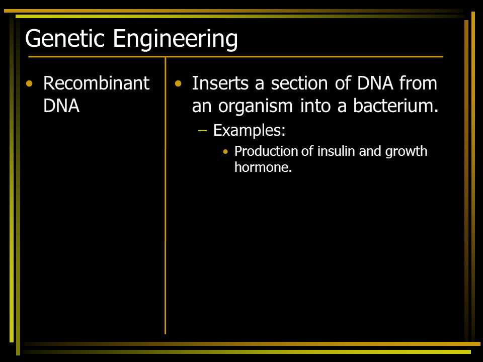 Genetic Engineering Recombinant DNA