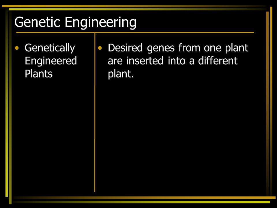 Genetic Engineering Genetically Engineered Plants