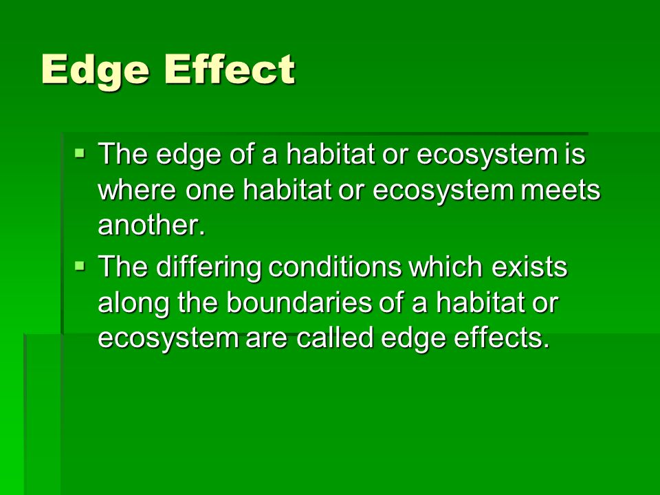 Edge Effect The edge of a habitat or ecosystem is where one habitat or ecosystem meets another.