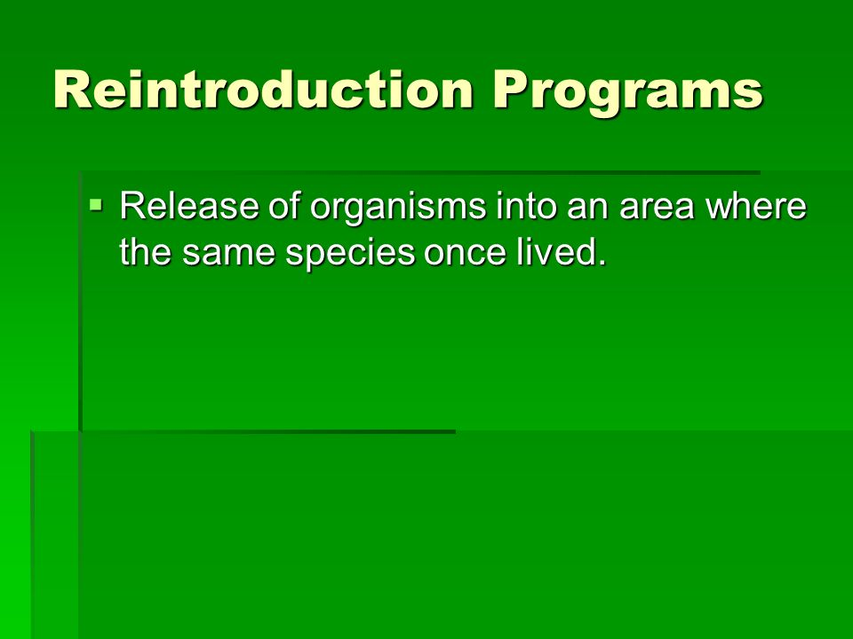 Reintroduction Programs