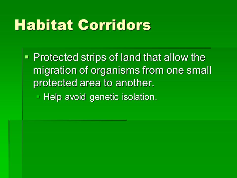 Habitat Corridors Protected strips of land that allow the migration of organisms from one small protected area to another.