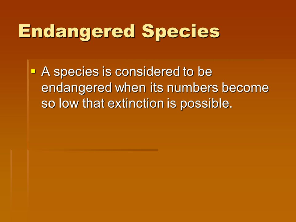 Endangered Species A species is considered to be endangered when its numbers become so low that extinction is possible.