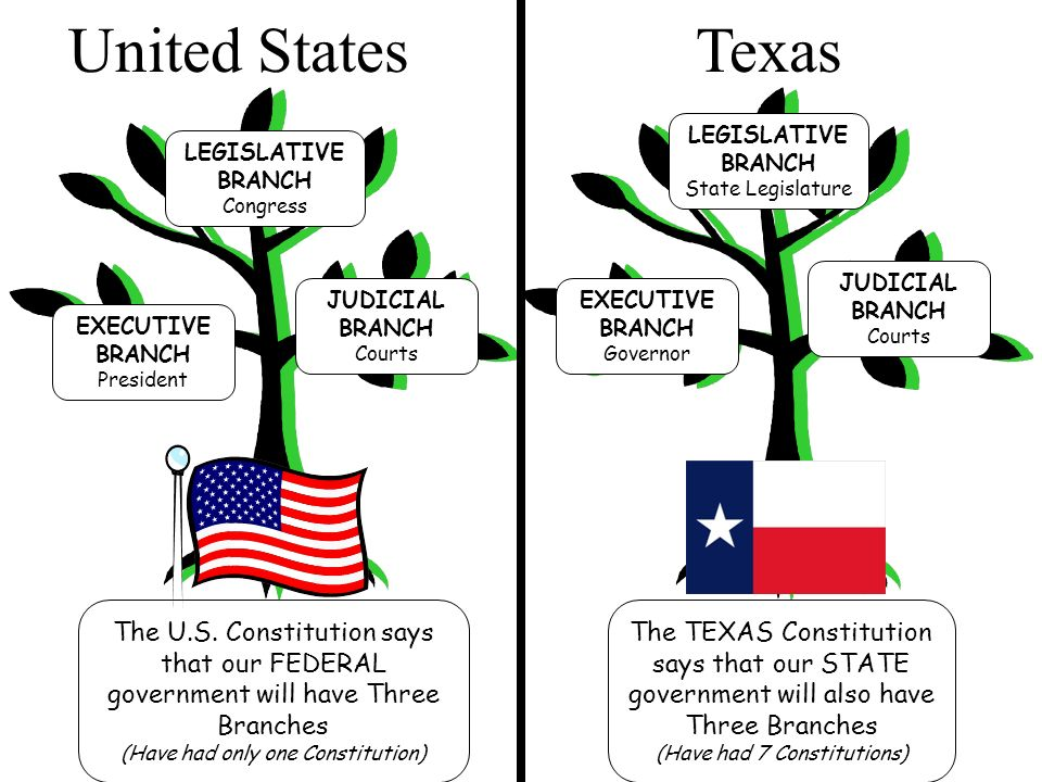 three branches of the texas government essay Three branches of the texas government essays 1628 words | 7 pages my analysis of the texas constitution i will assess the three branches of our state government, the legislative branch, executive branch and finally the judicial branch.