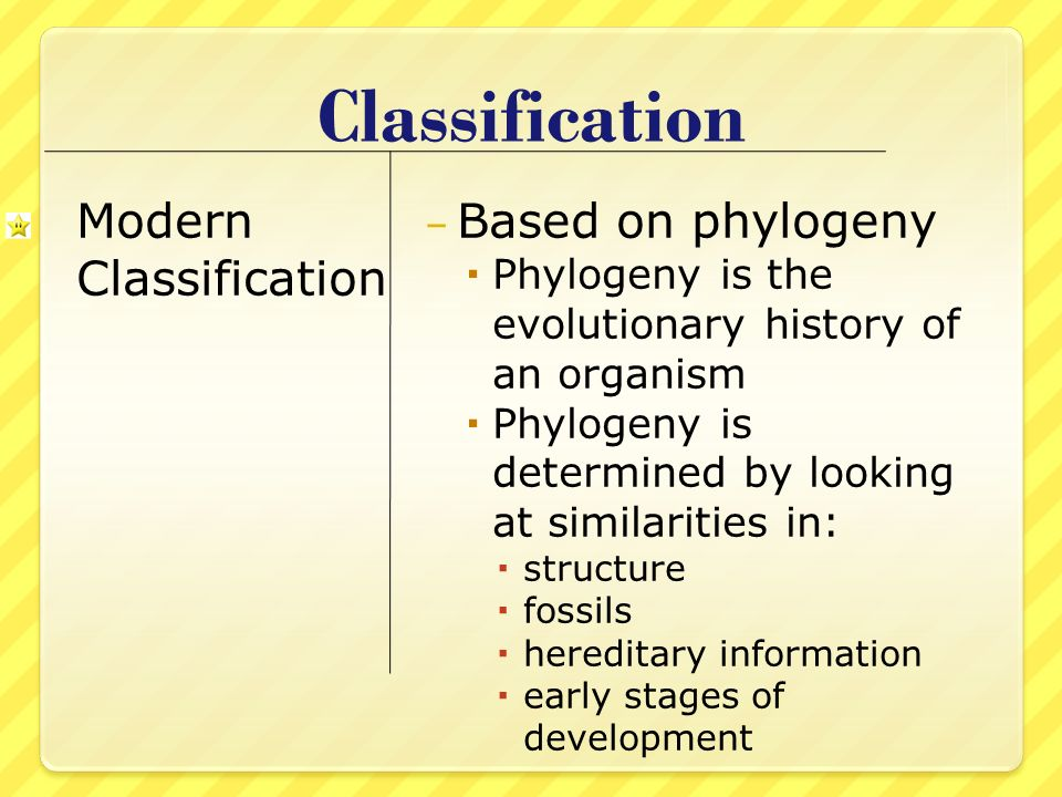 Classification Modern Classification Based on phylogeny