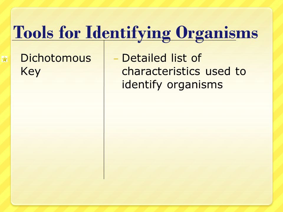 Tools for Identifying Organisms