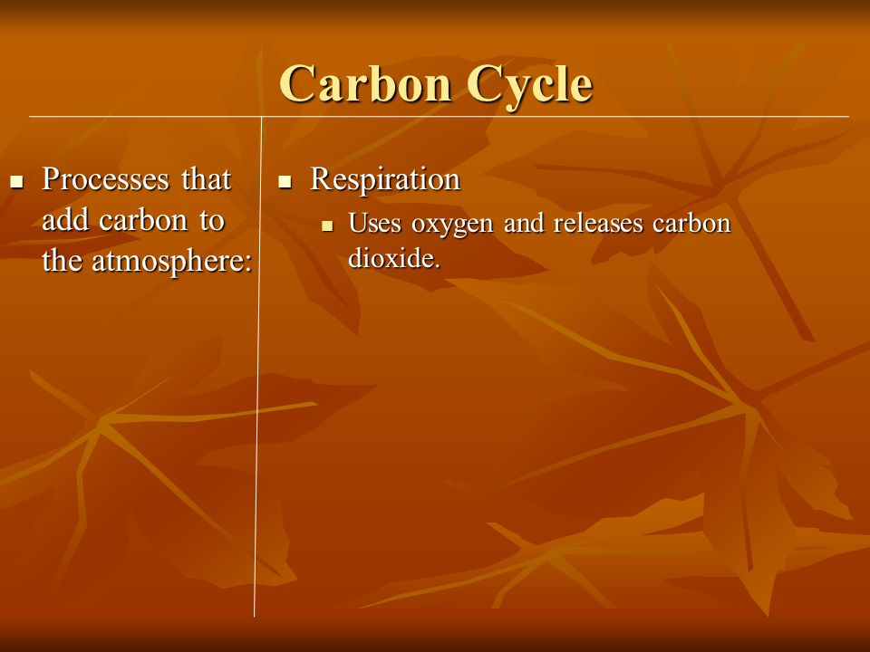 Carbon Cycle Processes that add carbon to the atmosphere: Respiration