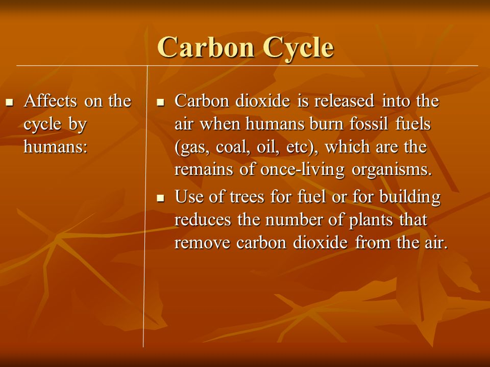 Carbon Cycle Affects on the cycle by humans: