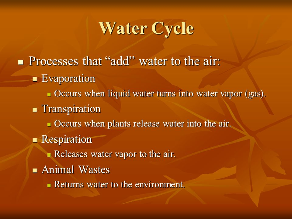 Water Cycle Processes that add water to the air: Evaporation