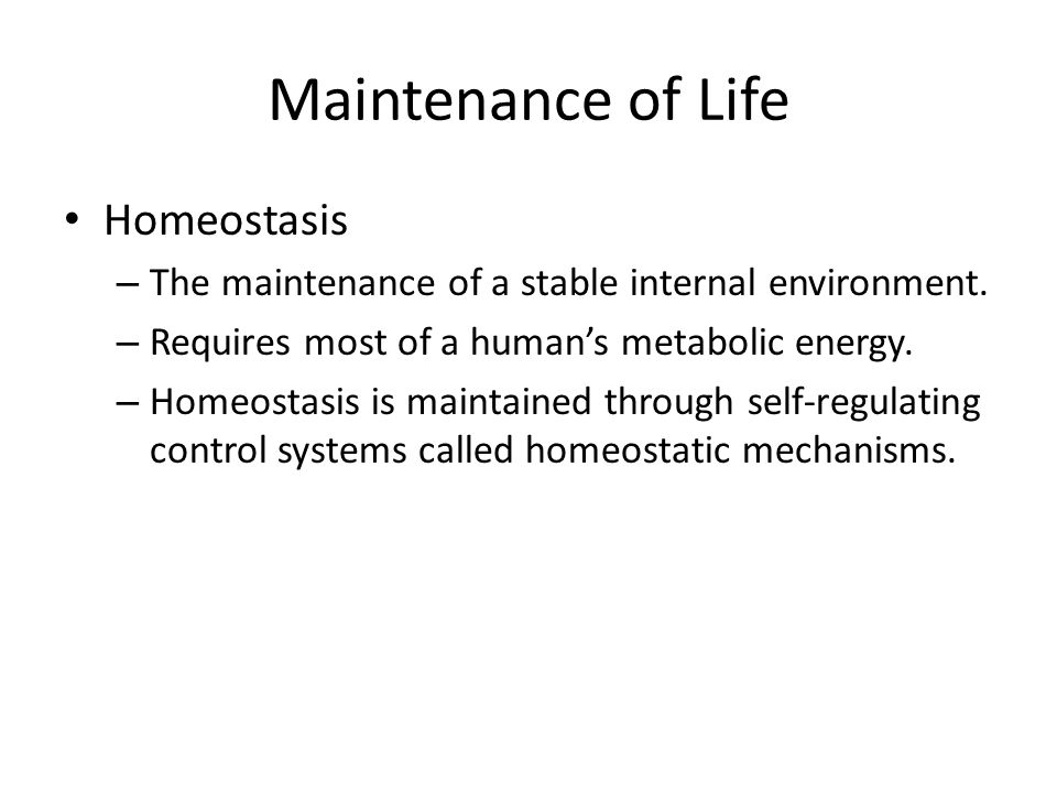 Maintenance of Life Homeostasis