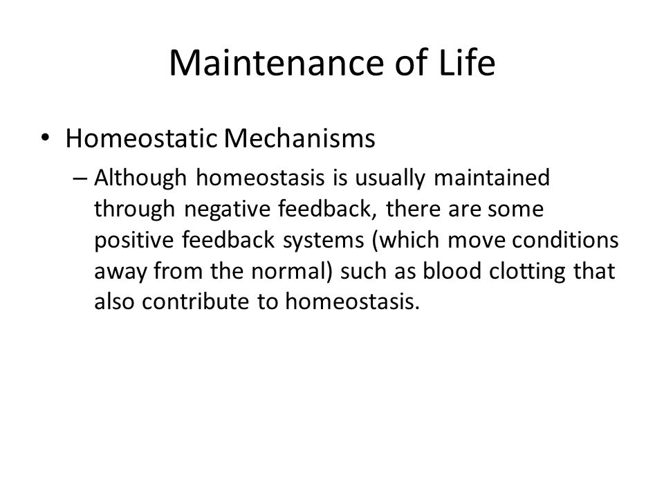 Maintenance of Life Homeostatic Mechanisms