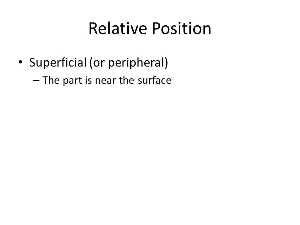 Relative Position Superficial (or peripheral)
