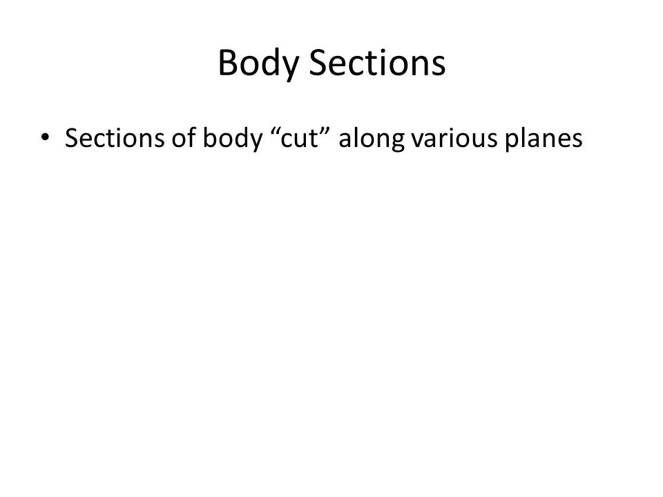 Body Sections Sections of body cut along various planes