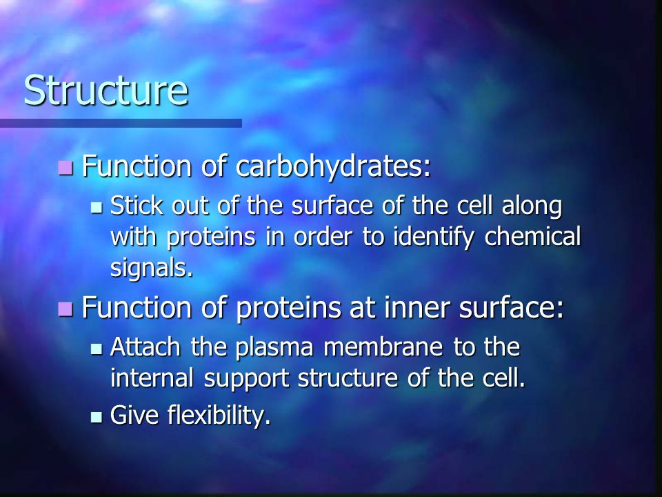 Structure Function of carbohydrates: