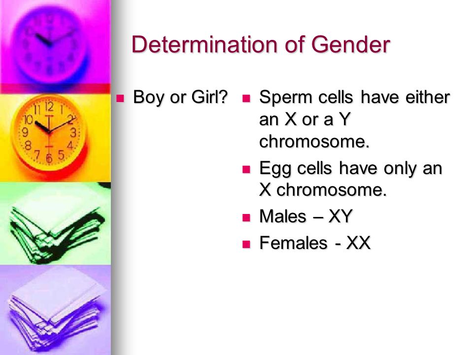 Determination of Gender
