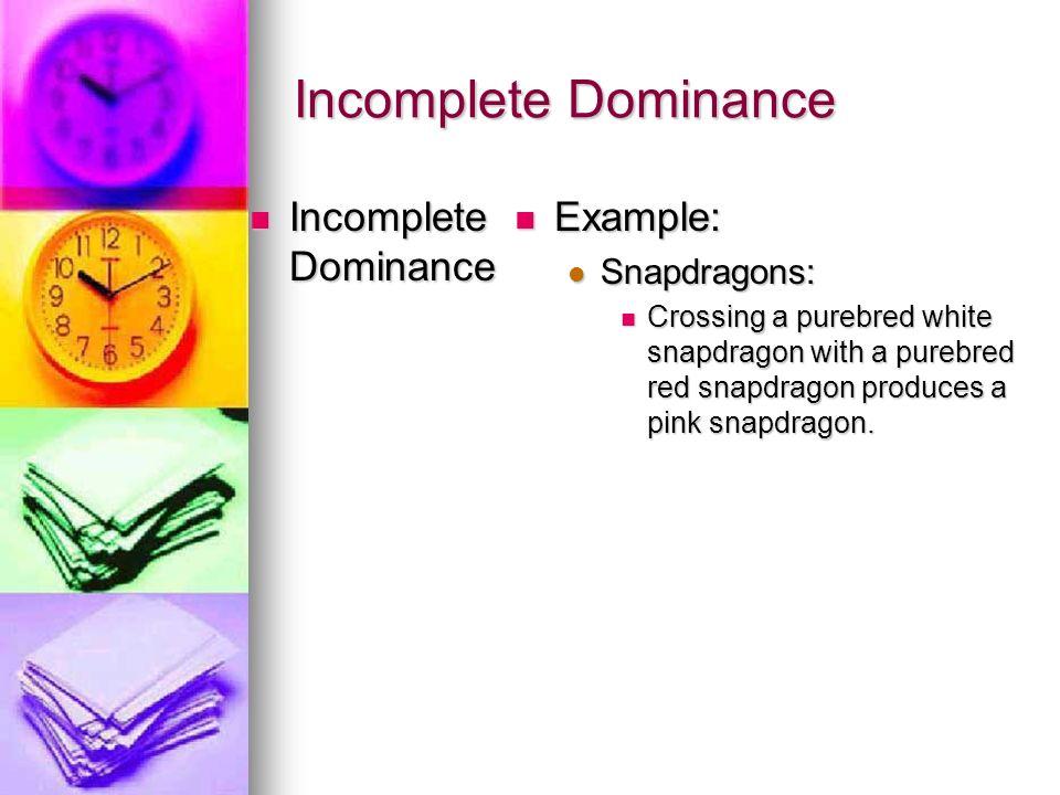 Incomplete Dominance Incomplete Dominance Example: Snapdragons: