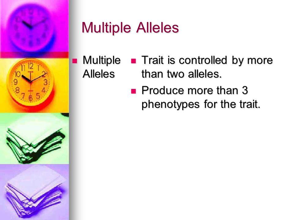 Multiple Alleles Multiple Alleles