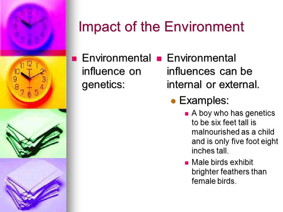 Impact of the Environment