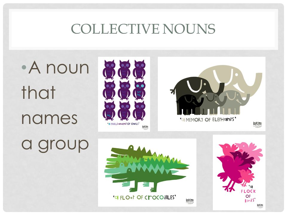 Collective nouns A noun that names a group