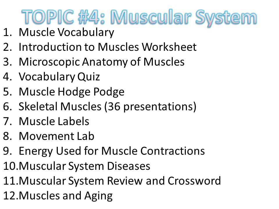 Worksheets On Decimals For Grade 4 Excel Muscular System  Ppt Video Online Download 3rd Grade Text Features Worksheets Pdf with Grade 2 Literacy Worksheets Topic  Muscular System  Skeletal Muscle Presentations Words Families Worksheet Excel