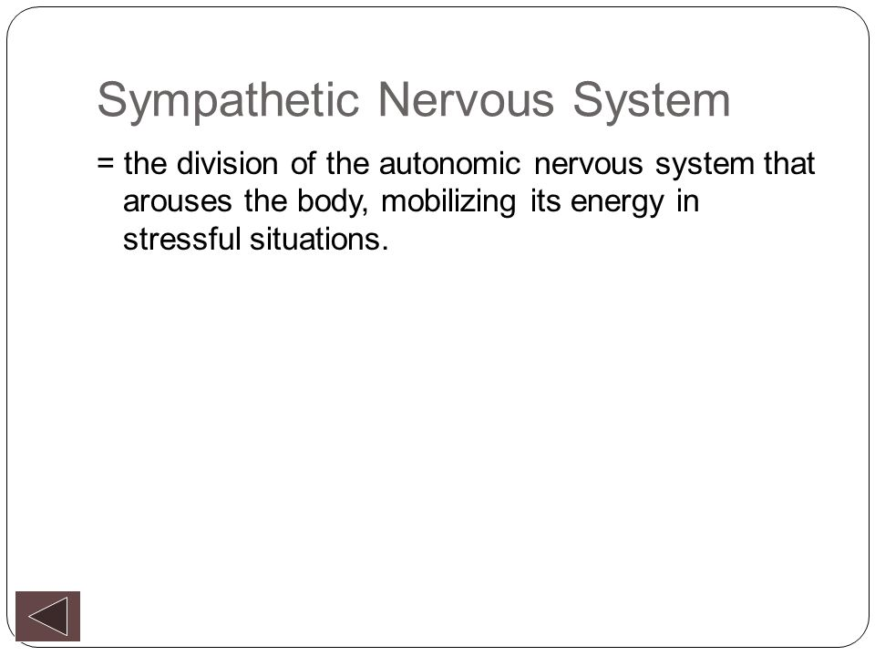 Nutritionally Controlling the Autonomic Nervous System by Pat Davidson