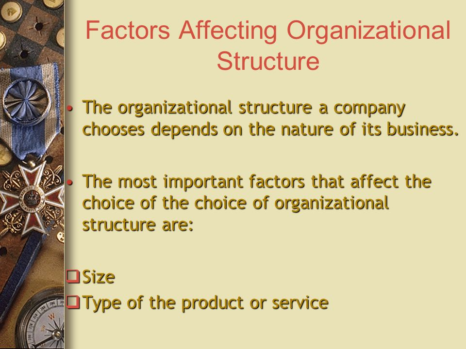 factors affecting organization size The impact of organizational factors on financial performance: building a theoretical model international journal of management science and business administration, 2(7), 51-56 vancouver.