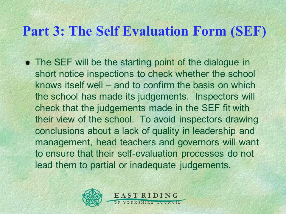 Part 3: The Self Evaluation Form (SEF)
