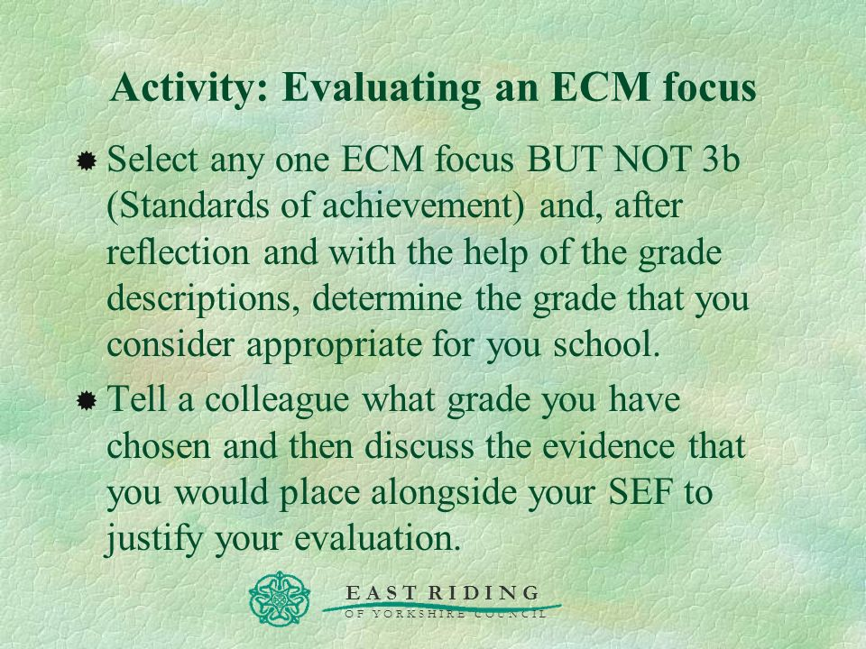 Activity: Evaluating an ECM focus