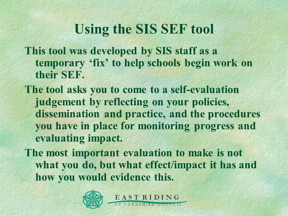 Using the SIS SEF tool This tool was developed by SIS staff as a temporary 'fix' to help schools begin work on their SEF.