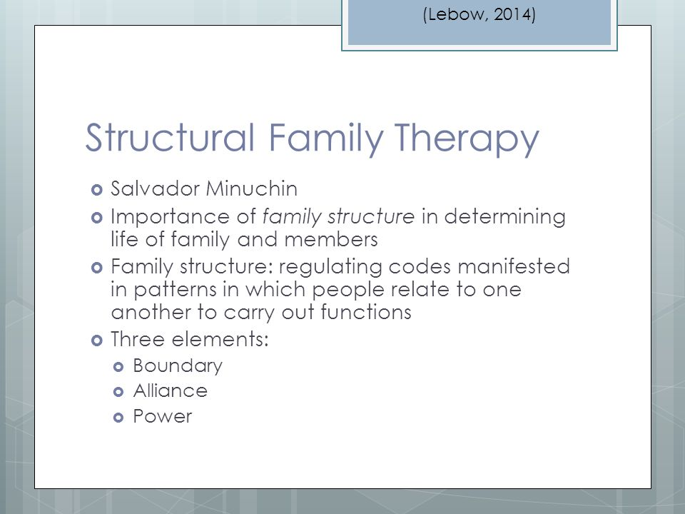 the dynamics of family structure and Families are assessed for their family dynamics, the family's structure, which was previously discussed and detailed, patterns of communication, boundaries that separate the family unit from other groups, parenting patterns, roles, methods of coping and bonding and attachments.