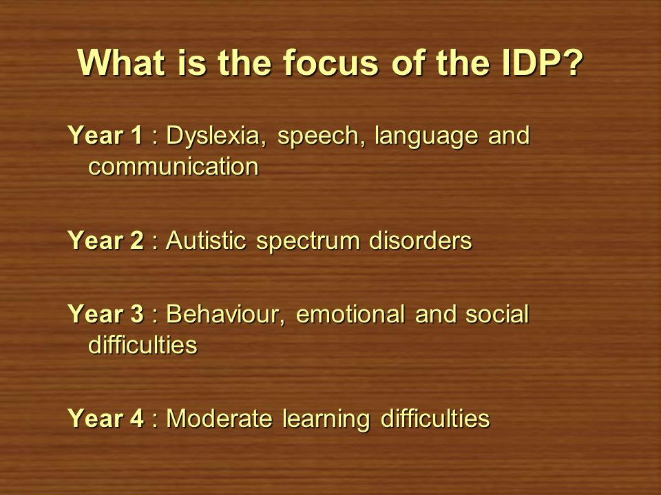 What is the focus of the IDP
