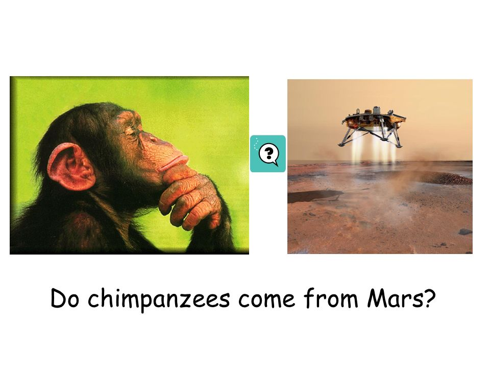 Do chimpanzees come from Mars